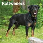 Rottweilers 2019 Square Cover Image