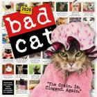 Bad Cat Wall Calendar 2020 Cover Image