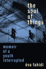 The Soul of Things: Memoir of a Youth Interrupted Cover Image