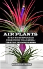 Air Plant: Step by Step Guide to Growing Tillandsia + Tips for Indoor Plants Cover Image