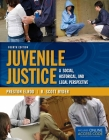 Juvenile Justice: A Social, Historical, and Legal Perspective Cover Image