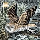 Adult Jigsaw Puzzle Angela Harding: Marsh Owl: 1000-piece Jigsaw Puzzles Cover Image