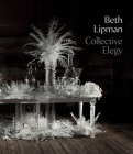 Beth Lipman: Collective Elegy Cover Image