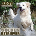 Golden Retriever 2021 Mini Wall Calendar Cover Image