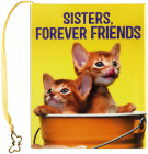 Sisters, Forever Friends Cover Image