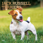 Jack Russell Terriers 2021 Square Foil Cover Image
