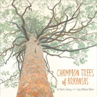 Champion Trees of Arkansas: An Artist's Journey Cover Image