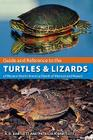 Guide and Reference to the Turtles and Lizards of Western North America (North of Mexico) and Hawaii Cover Image