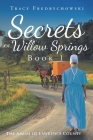 Secrets of Willow Springs - Book 1: The Amish of Lawrence County Cover Image