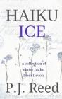 Haiku Ice Cover Image