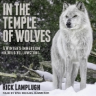 In the Temple of Wolves Lib/E: A Winter's Immersion in Wild Yellowstone Cover Image