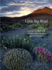 Little Big Bend: Common, Uncommon, and Rare Plants of Big Bend National Park (Grover E. Murray Studies in the American Southwest) Cover Image