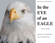 In the Eye of an Eagle: A look at the world from above. Cover Image