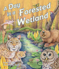 A Day in a Forested Wetland Cover Image