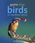 Game Drive: Birds of Southern Africa Cover Image