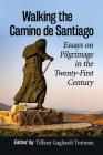 Walking the Camino de Santiago: Essays on Pilgrimage in the Twenty-First Century Cover Image