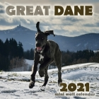 Great Dane 2021 Mini Wall Calendar Cover Image