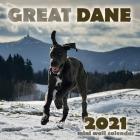 Great Dane 2021 Mini Wall Calendar Cover Image