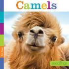 Seedlings: Camels Cover Image