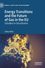 Energy Transitions and the Future of Gas in the Eu: Subsidise or Decarbonise Cover Image
