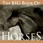 The Big Book of Horses Cover Image