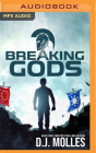 Breaking Gods Cover Image
