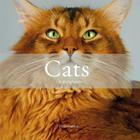Cats: The Most Beautiful Cats/Cat Tales Cover Image