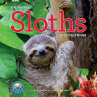 Original Sloths Wall Calendar 2022: 12 Months of Irresitable Cuteness, Sloth Trivia, Stories, and Facts Cover Image