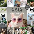 Cats on Instagram 2020 Wall Calendar: (Cat Wall Calendar, 2020 Wall Calendar, Cat Gifts for Cat Lovers) Cover Image