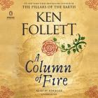 A Column of Fire (Kingsbridge) Cover Image