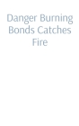 Danger Burning Bonds Catches Fire: Perpetual Commercial Reparations (A Not Ready for Prime Time Economic Theory.) Cover Image