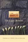 The Light Between (Made in Michigan Writers) Cover Image