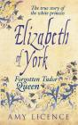 Elizabeth of York: The Forgotten Tudor Queen Cover Image