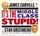 It's the Middle Class, Stupid! Cover Image