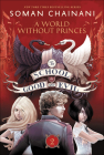 World Without Princes Cover Image
