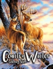 Country Winter Coloring Book: Adult Coloring Book Featuring Beautiful Winter Scenes, Relaxing Country Landscapes and Cozy Interior Designs Cover Image