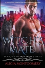 Witch's Mate: A Billionaire Werewolf Shifter Paranormal Romance Cover Image