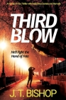 Third Blow: A Novel of Suspense (Book 3 in the Detectives Daniels and Remalla Series) Cover Image
