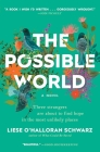 The Possible World: A Novel Cover Image