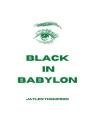 Black in Babylon Cover Image