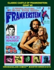 Classic Castle Of Frankenstein: Giant #2: Gwandanaland Comics Monster Series #12/13 --- over 525 Pages of