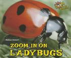 Zoom in on Ladybugs (Zoom in on Insects!) Cover Image