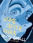 Home After Dark: A Novel Cover Image
