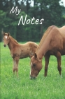 My notes: Foal Notebook, Horse - Size 6