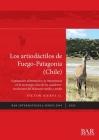 Los artiodáctilos de Fuego-Patagonia (Chile): Explotación alimenticia y su importancia en la tecnología ósea de los cazadores-recolectores del Holocen (BAR International #2993) Cover Image