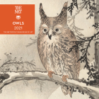 Owls 2021 Mini Wall Calendar Cover Image
