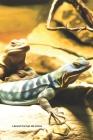 Lézard Carnet de notes: Journal A5 ligné original de 119 pages- Une belle idée de cadeau pour les amoureux des animaux Cover Image