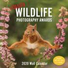 Comedy Wildlife 2020 Wall Calendar: (Funny 2020 Wall Calendar, Funny Wall Calendar with Animals, Photo Wall Calendar) Cover Image