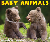 Baby Animals 2021 Box Calendar Cover Image