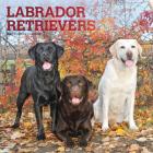 Labrador Retrievers 2021 Square Foil Cover Image